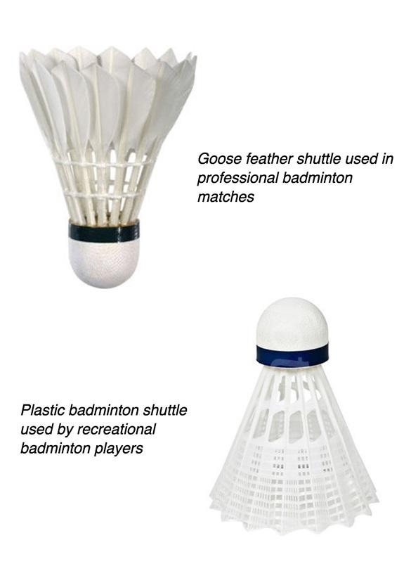 Badminton-book